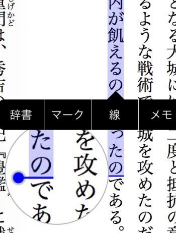 ひかりTVブック ビューア小説